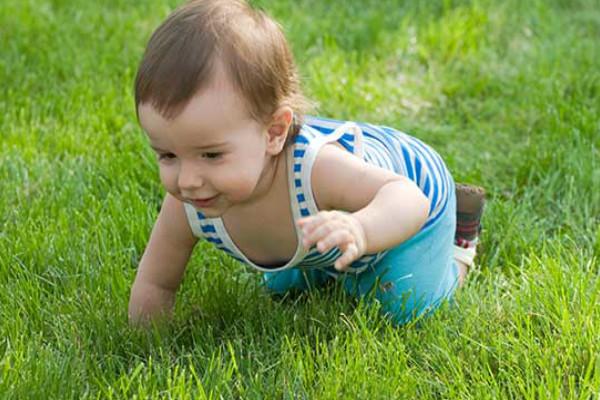 bebê 8 meses