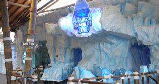 atrações no aquário de são paulo